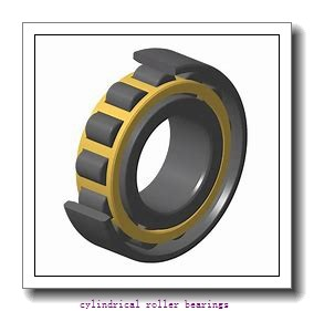 70 mm x 150 mm x mm  Rollway N 314 EM Cylindrical Roller Bearings