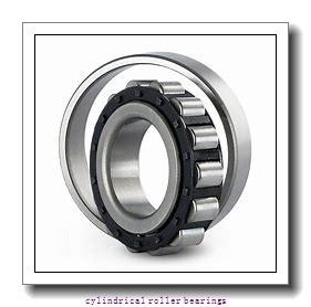 Link-Belt MU1211UM Cylindrical Roller Bearings