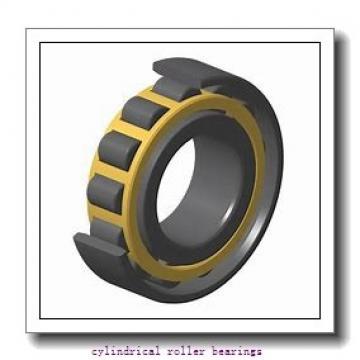 35 mm x 80 mm x mm  Rollway NU 307 EM Cylindrical Roller Bearings