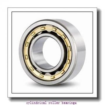 100 mm x 215 mm x mm  Rollway NU 320 EM Cylindrical Roller Bearings