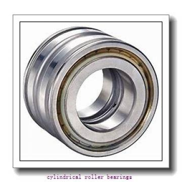 80 mm x 170 mm x mm  Rollway NJ 316 EM Cylindrical Roller Bearings