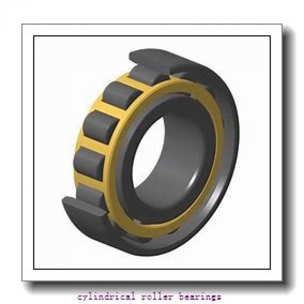 Link-Belt MU1207GUV Cylindrical Roller Bearings #1 image