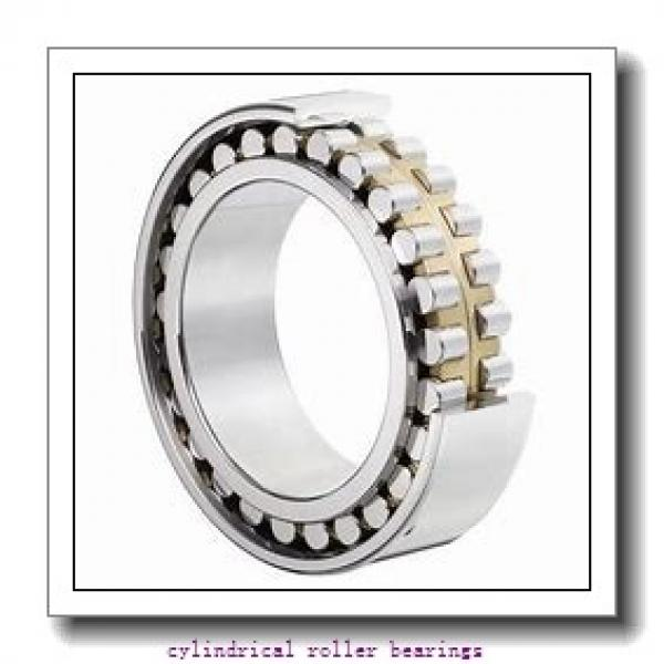 50 mm x 110 mm x mm  Rollway NJ 310 EM Cylindrical Roller Bearings #1 image