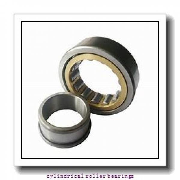95 mm x 200 mm x mm  Rollway NJ 319 EM Cylindrical Roller Bearings #1 image