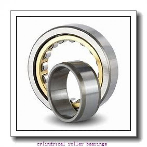 120 mm x 260 mm x 17 mm  Rollway NU 324 EM C3 Cylindrical Roller Bearings #1 image