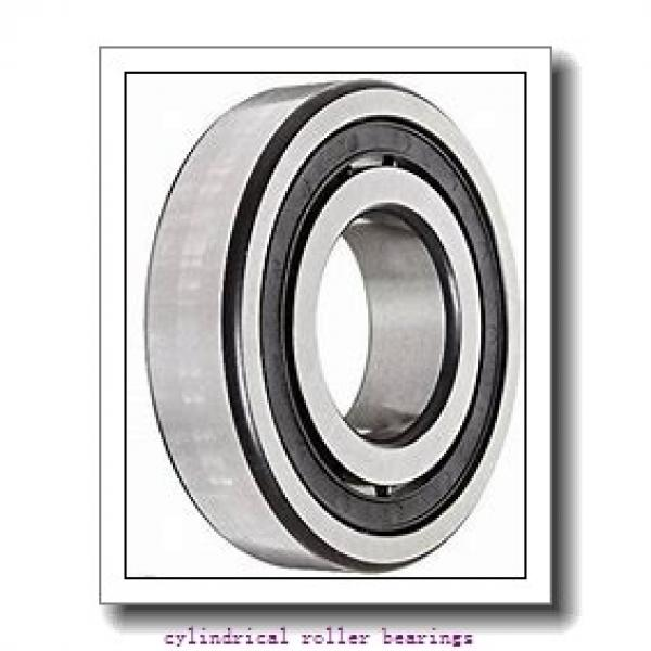 50 mm x 110 mm x mm  Rollway N 310 EM Cylindrical Roller Bearings #1 image