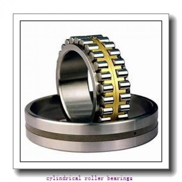 120 mm x 215 mm x mm  Rollway NU 224 EM Cylindrical Roller Bearings #1 image