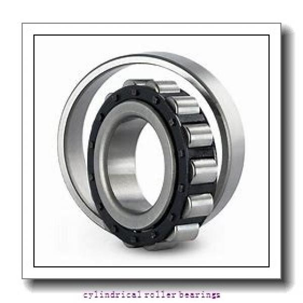 Link-Belt MU1214UHV Cylindrical Roller Bearings #1 image