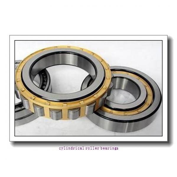 95 mm x 170 mm x mm  Rollway NJ 219 EM Cylindrical Roller Bearings #1 image