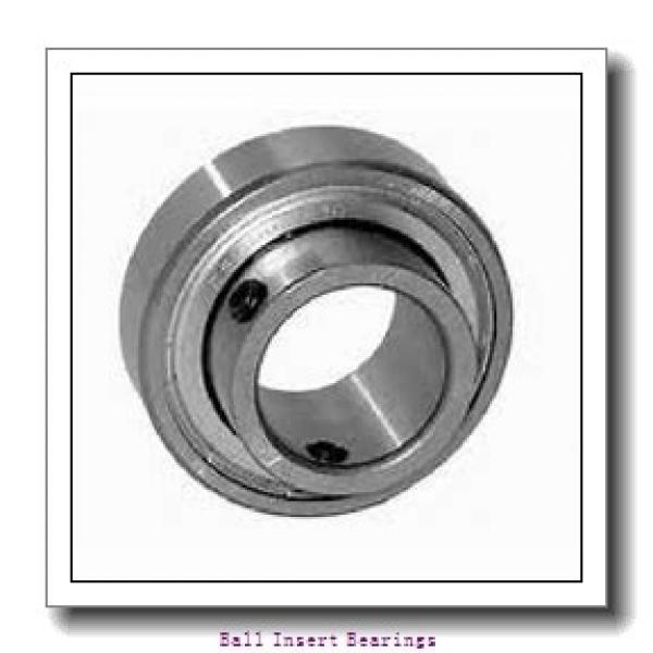 PEER FH205-25MMG Ball Insert Bearings #1 image